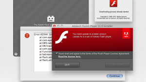 Adobe Flash Error